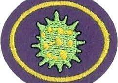 STEZOSLEDCI: Virusi
